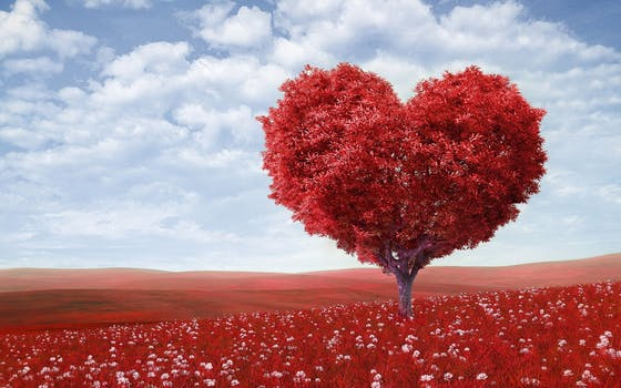 Heart to Heart: Mom of a CHDWarrior